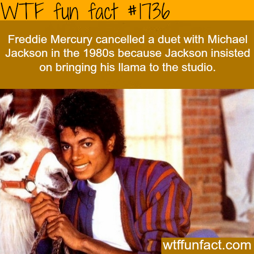 Freddie Mercury and Michael Jachson duet - WTF fun facts