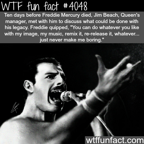 Freddie Mercury - WTF fun facts
