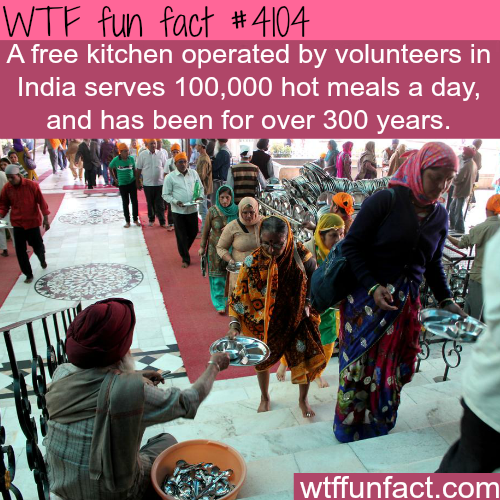Free kitchen in India serves 100
