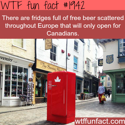Fridges full of beer for Canadians -WTF fun facts