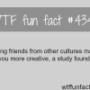 friends from other cultures wtf fun facts