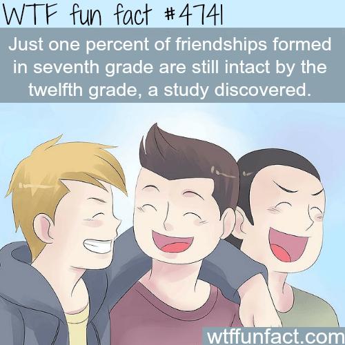 Friendship in high school - WTF fun facts