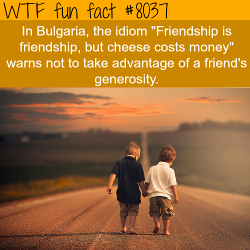 Friendship quotes - WTF fun fact