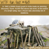 frozen lake full of skeletons wtf fun facts