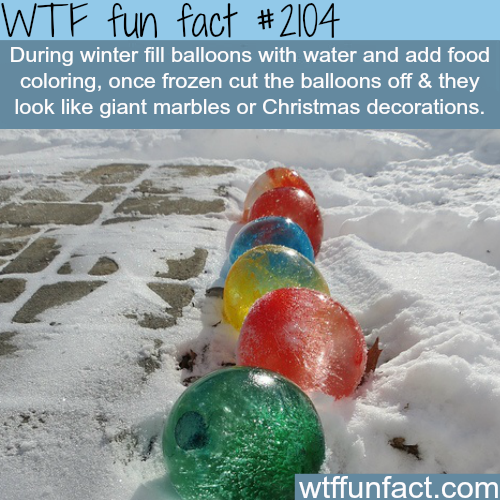 Frozen Water Balloons -WTF fun facts