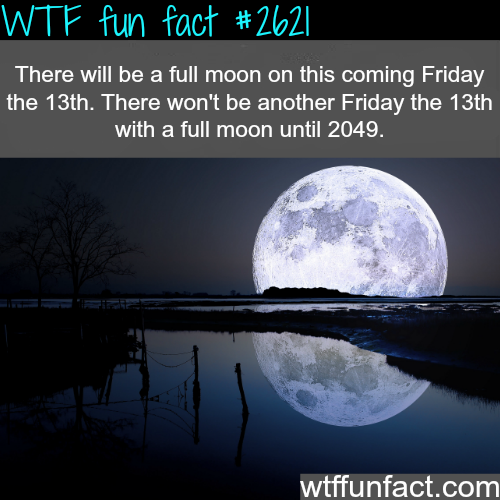 Full Moon this Friday the 13th -WTF funfacts