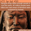 genghis khan killed this much people