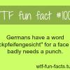 german language facts