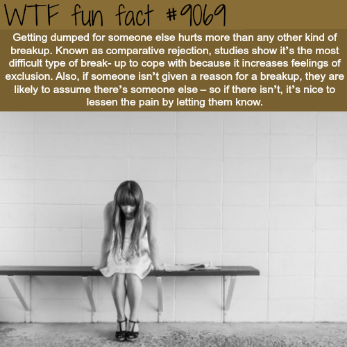Getting dumped - WTF fun facts