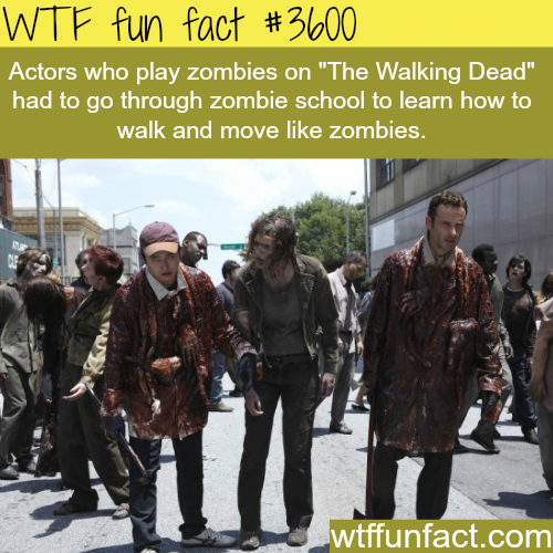 Go to school to learn how to walk like a zombie - WTF fun facts