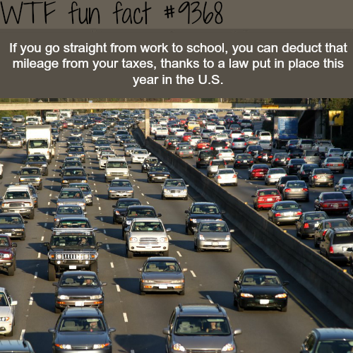 Going to school from work - WTF fun facts