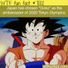 goko to be ambassador of 2020 tokyo olympics wtf