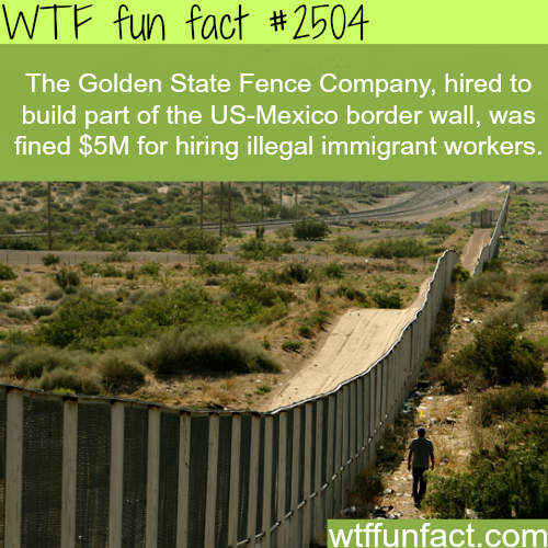 Golden State Fence Company Hires illegal immigrant -WTF funfacts