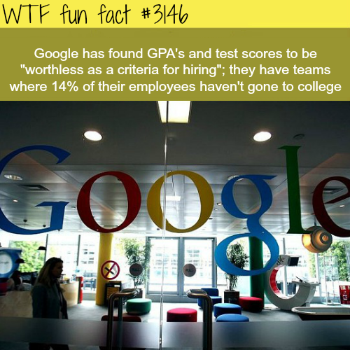 Google hires people with no college degree -  WTF fun facts