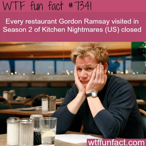 Gordon Ramsay's Kitchen Nightmares - WTF fun fact