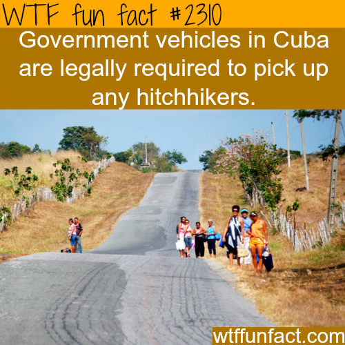 Government vehicles in Cuba -WTF funfacts