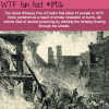 great whiskey fire wtf fun facts