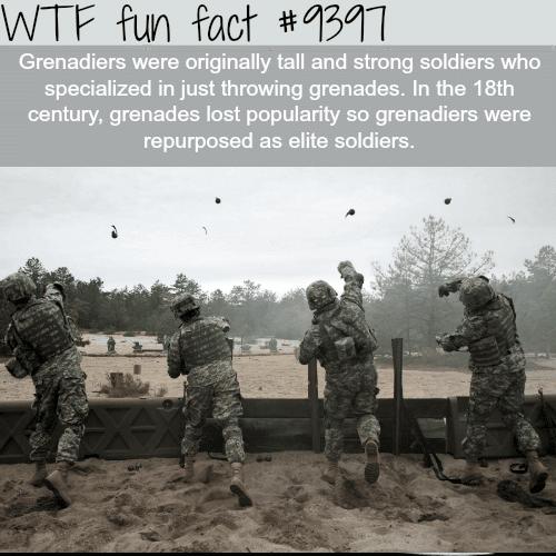 Grenadiers - WTF fun facts