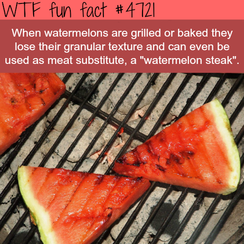 Grilled Watermelons - WTF fun facts