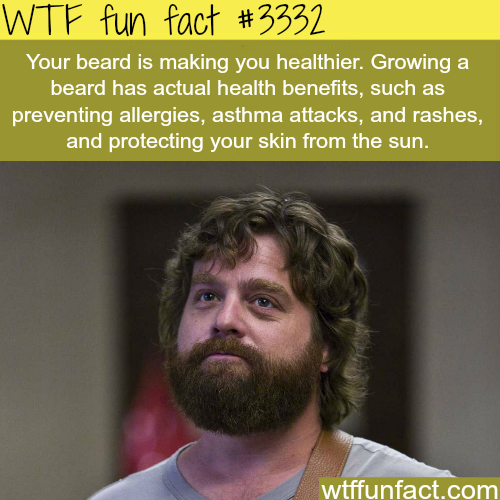 Growing a beard is healthy for you -  WTF fun facts