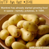 growing food in space wtf fun facts