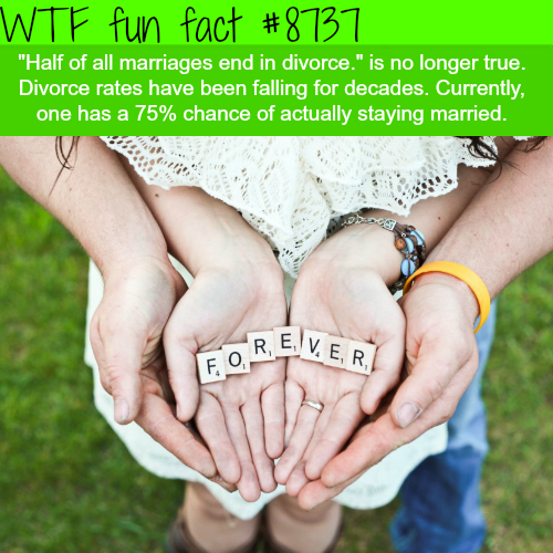 Half of all marriages end in divorce - WTF fun facts