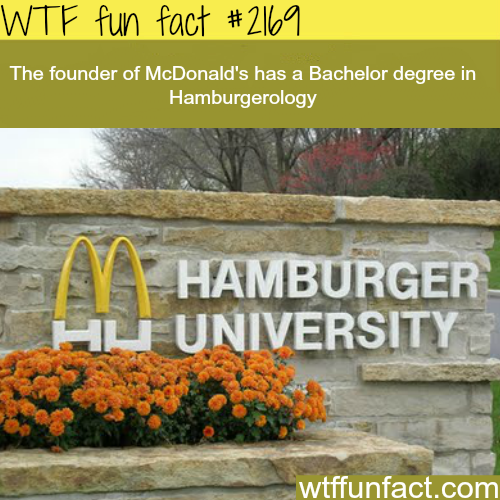 Hamburger University - WTF fun facts