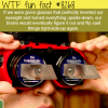 happy christmas wtf fun facts