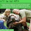 harriet the tortoise wtf fun fact