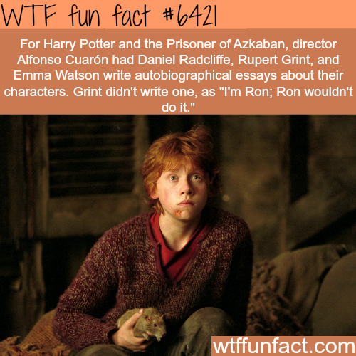 Harry Potter and the Prisoner - WTF fun facts