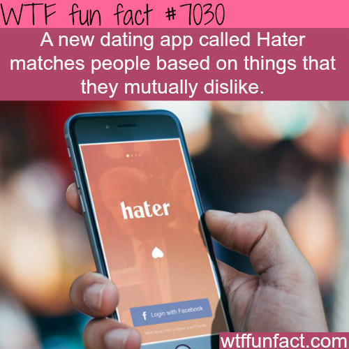 Hater dating app - WTF fun facts