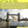 henry iiis polar bear wtf fun facts