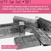 hershey chocolate bar rations wtf fun facts