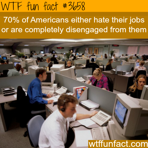 High percentage of Americans hate their jobs -  WTF fun facts