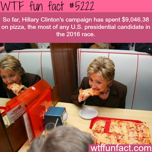 Hillary Clinton's campaign spent the most on pizza - WTF fun facts