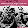 hitler outlawed animal cruelty wtf fun fact
