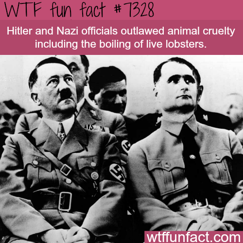 Hitler outlawed animal cruelty - WTF fun fact