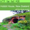 hobbit house walls new zealand