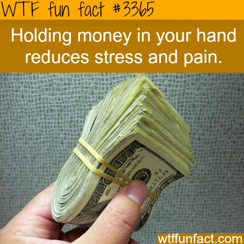 Holding money can make you happier - WTF fun facts
