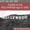 hollyweed sign prank