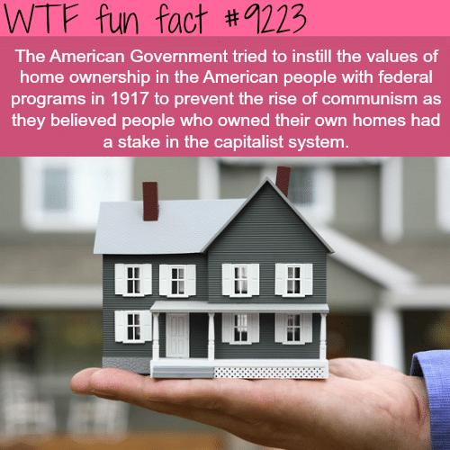 Home ownershipin America - WTF Fun Fact