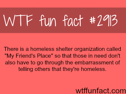 """Homeless shelter """"My friends place"""" -WTF fun facts"""