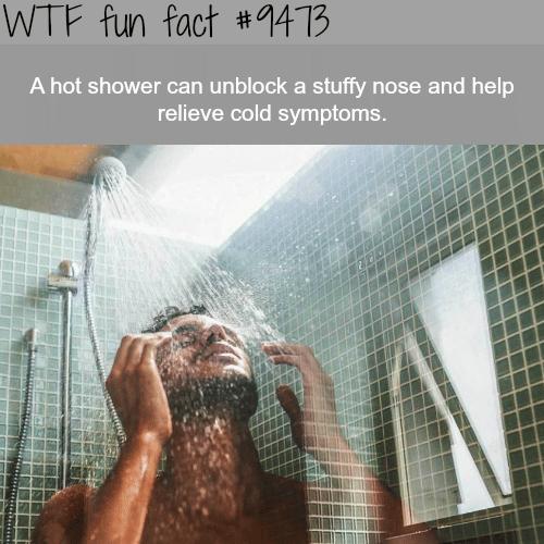hot shower - WTF fun fact