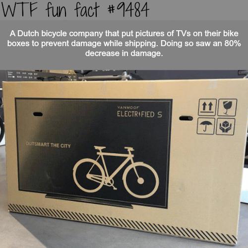 How a Dutch Company Ships Their Bikes - WTF fun fact