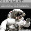 how astronauts scratch their nose in space wtf