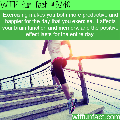 How exercising can make your day better -WTF fun facts