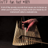 how horror movies make the spooky sounds wtf fun