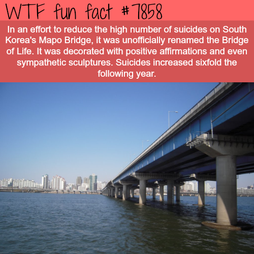 How Korea tried to reduce the number of suicides… - WTF fun facts