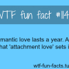 how long does romantic love last love fact