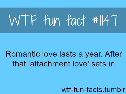 (soucre)-How long does romantic love last - love fact